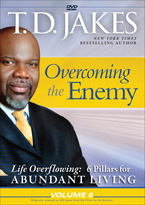 Life Overflowing: 6 Pillars for Abundant Living