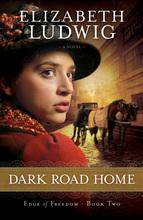 Dark Road Home by Elizabeth Ludwig